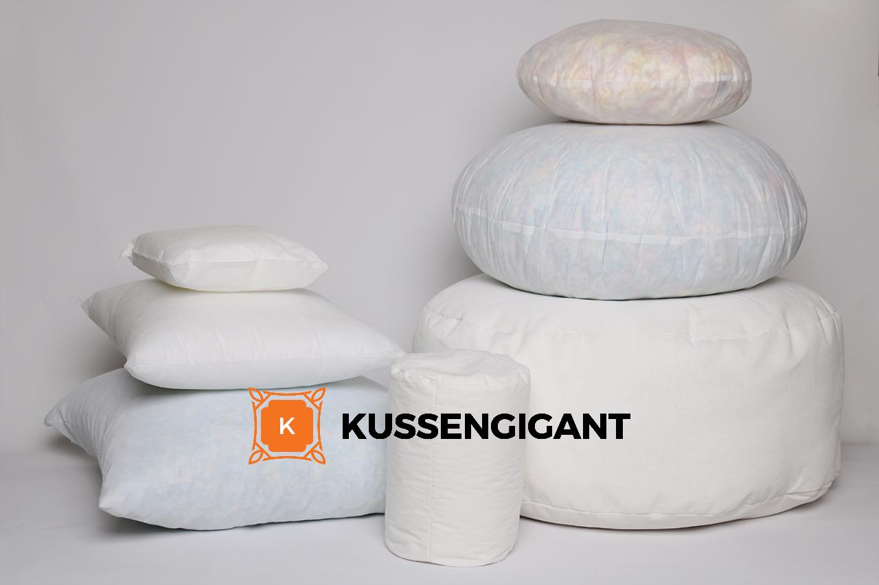 Goedkope Kussenhoezen 50x50.Binnenkussens