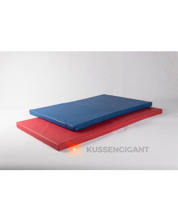 148x75x5 & 120x80x5 Kussens kunstleer blauw en rood